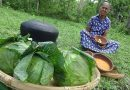 Cabbage Snacks Recipe prepared in my Village by Grandma | Village Life
