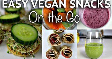 EASY VEGAN SNACK IDEAS (on the go + healthy)