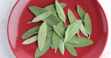 Sage Leaf Benefits, Two Lesser-Known Herbal Uses