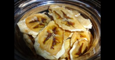 How to Make dehydrator Banana chips for Cheap easy snack