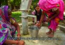 ORGANIC INDIA in Action – Growing Tulsi as a Community