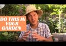 Do This In Your Garden to Grow the Best Organic Garden Ever