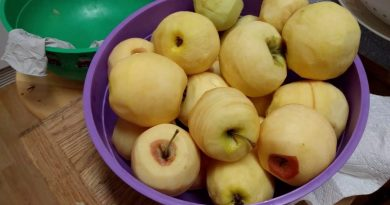 How I Make Applesauce – Varieties, Organic or Not?