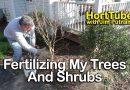 Fertilizing My Shrubs and Trees – Organic Fertilizers