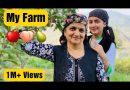My Farm Tour || Apple Orchard || Organic Farming || Shimla, Himachal Pradesh || Jyotika Dilaik