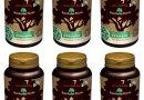 (6 PACK) – Rainforest Foods – Organic Chlorella & Spirulina   300's   6 PACK BUNDLE by Rainforest Foods