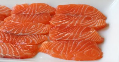 Quick Cured Salmon – How to Cure Salmon in 3 Minutes